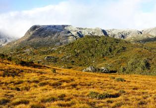 Overland Track (Tasmania)