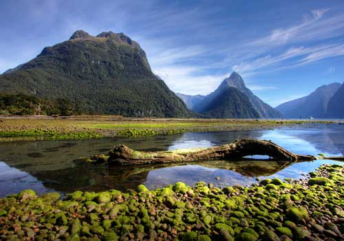Milford Track (New Zealand)