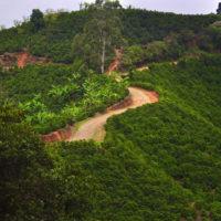 Camino de Costa Rica 05