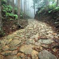 Kumano-Kodo,-Nakahechi-route,-stone-trail