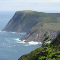 East Coast Trail 1 - Office Manager