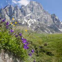 Transcaucasian Trail_6 - Paul Stephens